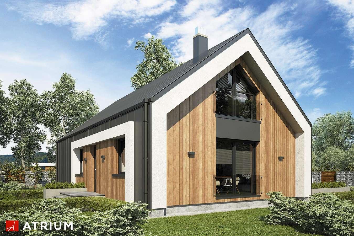 Projekty domów - Projekt domu z poddaszem AURORA MIDI III BIS - wizualizacja 1
