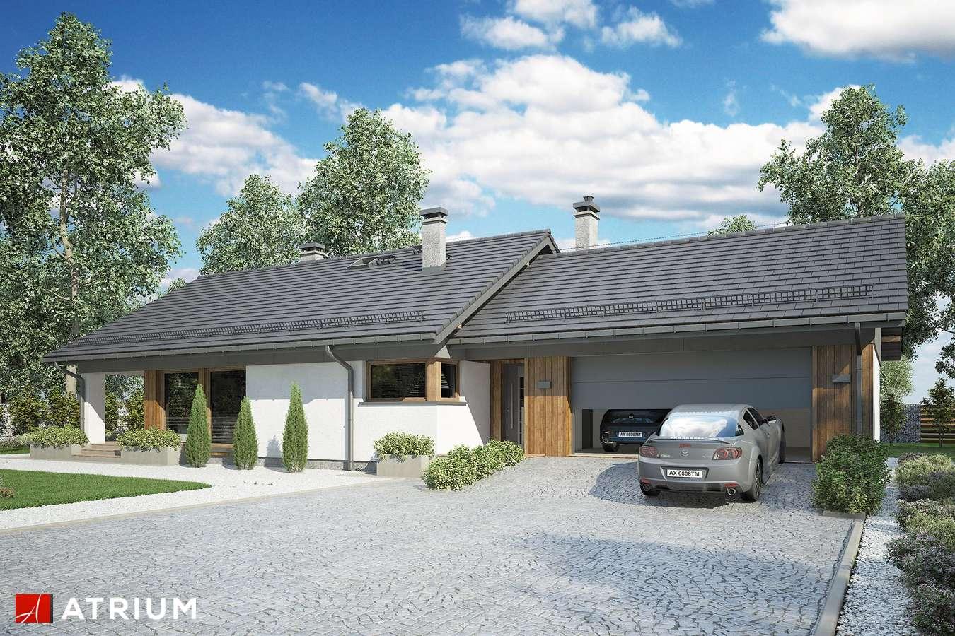 Projekty domów - Projekt domu parterowego KOS MINI II SZ - wizualizacja 1