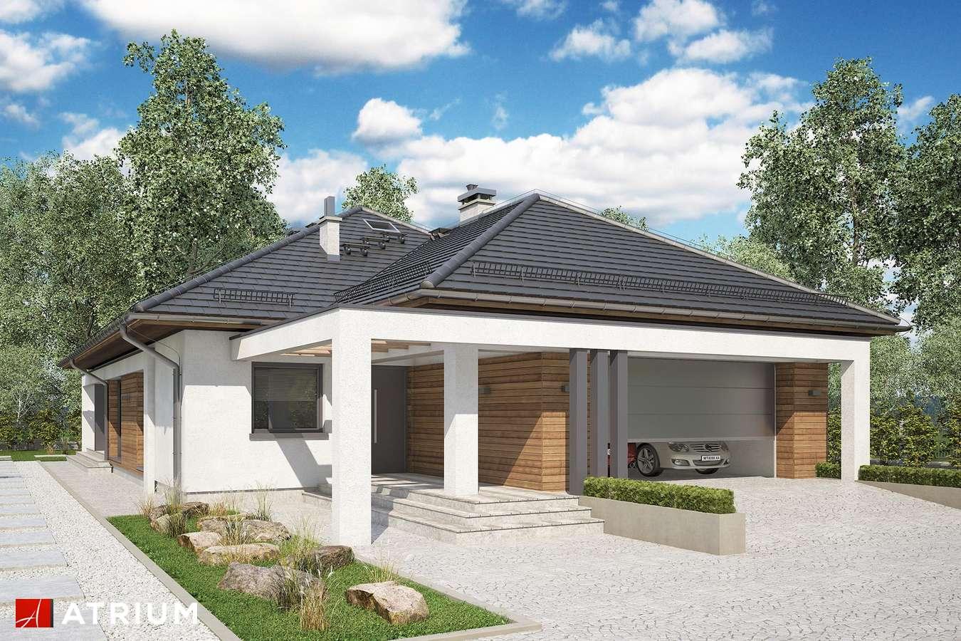 Projekty domów - Projekt domu parterowego HEKTOR - wizualizacja 1