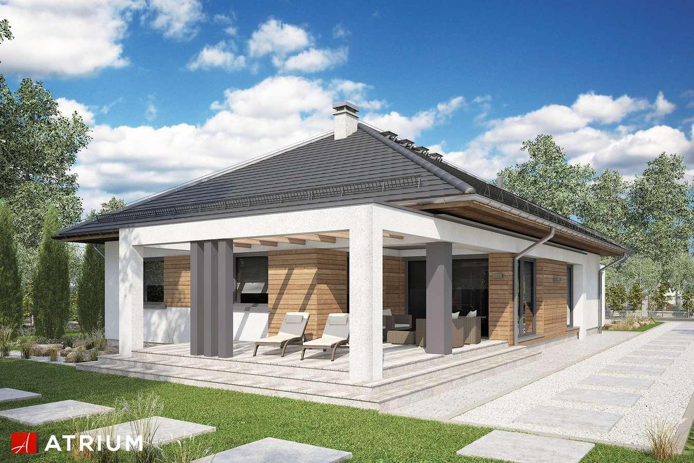 Projekty domów - Projekt domu parterowego HEKTOR - wizualizacja 2