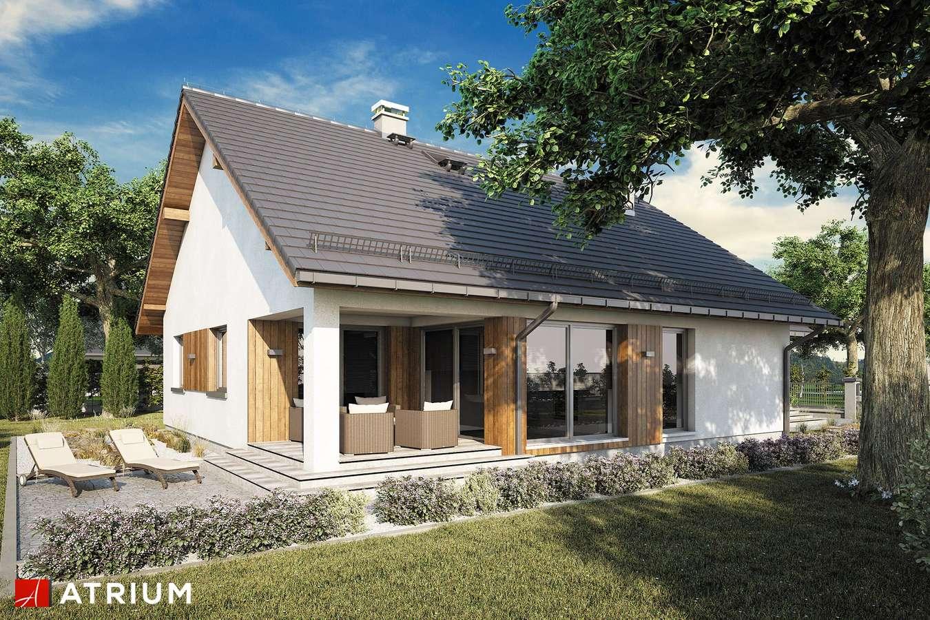 Projekty domów - Projekt domu parterowego BURSZTYN PLUS MAXI III - wizualizacja 2