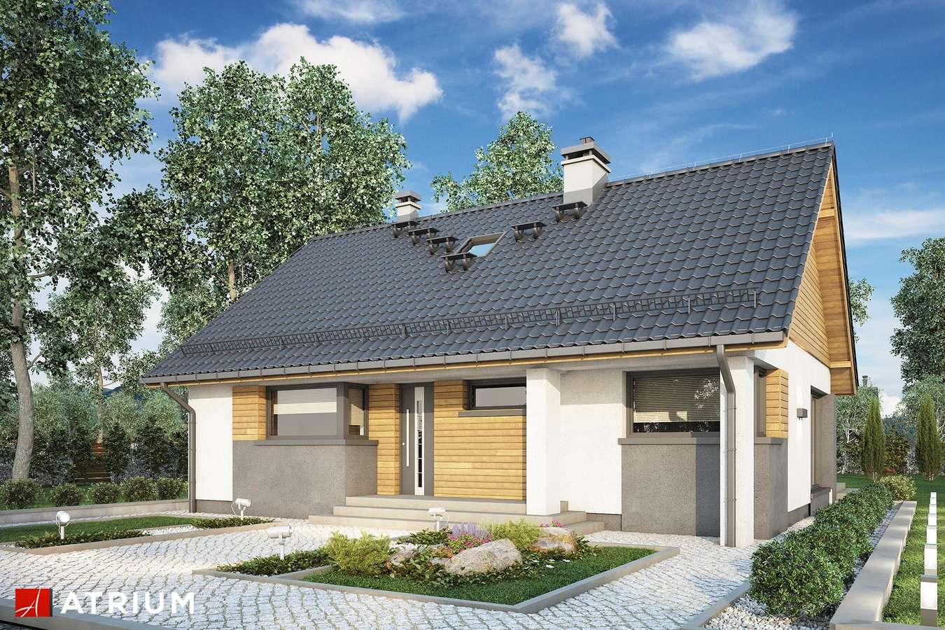 Projekty domów - Projekt domu z poddaszem RICARDO LIFT III - wizualizacja 1