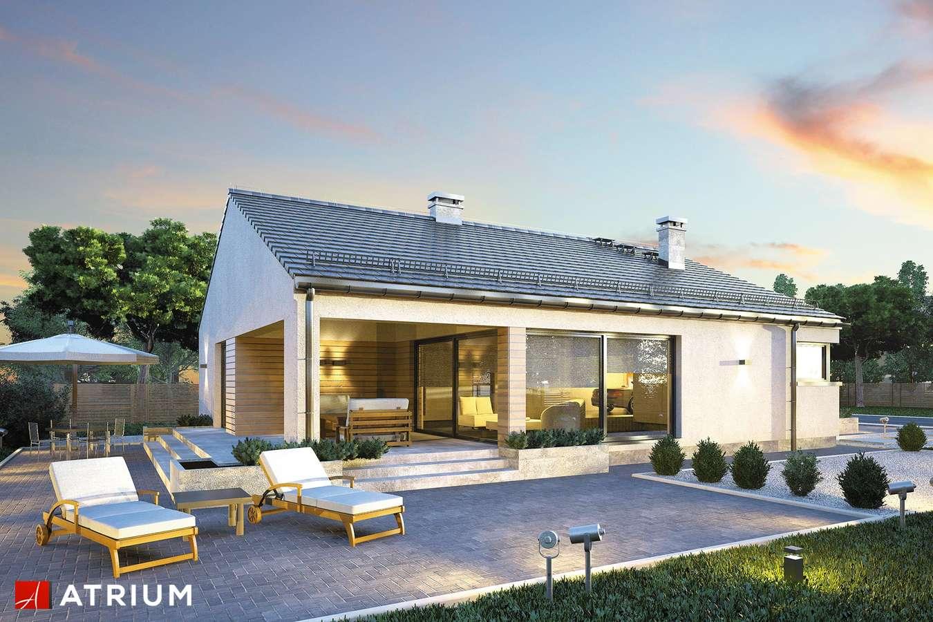 Projekty domów - Projekt domu parterowego PLISZKA IV BIS - wizualizacja 1