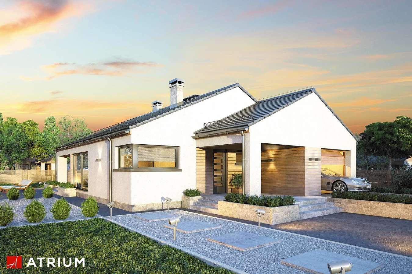 Projekty domów - Projekt domu parterowego PLISZKA IV BIS - wizualizacja 2