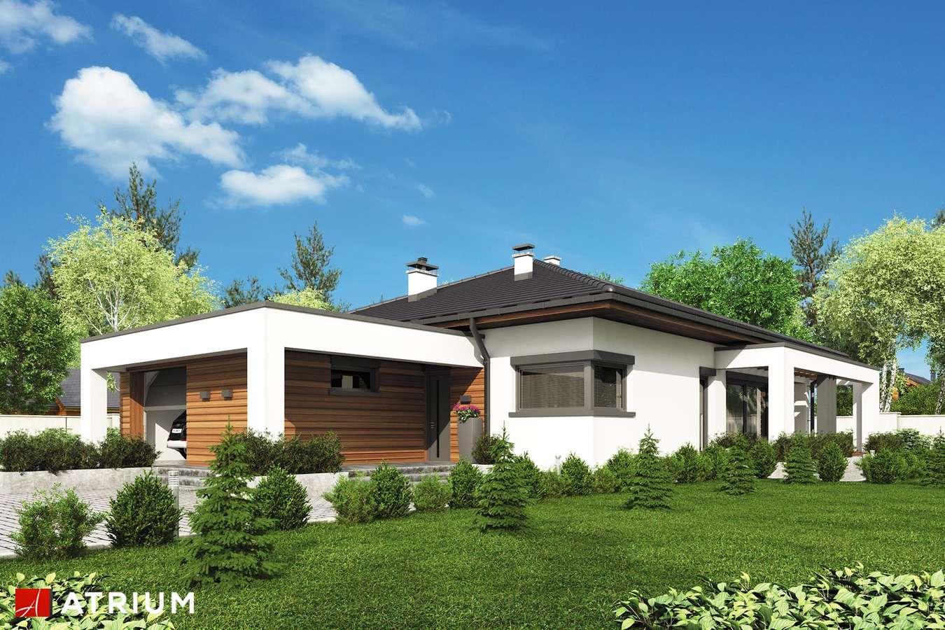 Projekty domów - Projekt domu parterowego SARDYNIA XI - wizualizacja 1 - wersja lustrzana