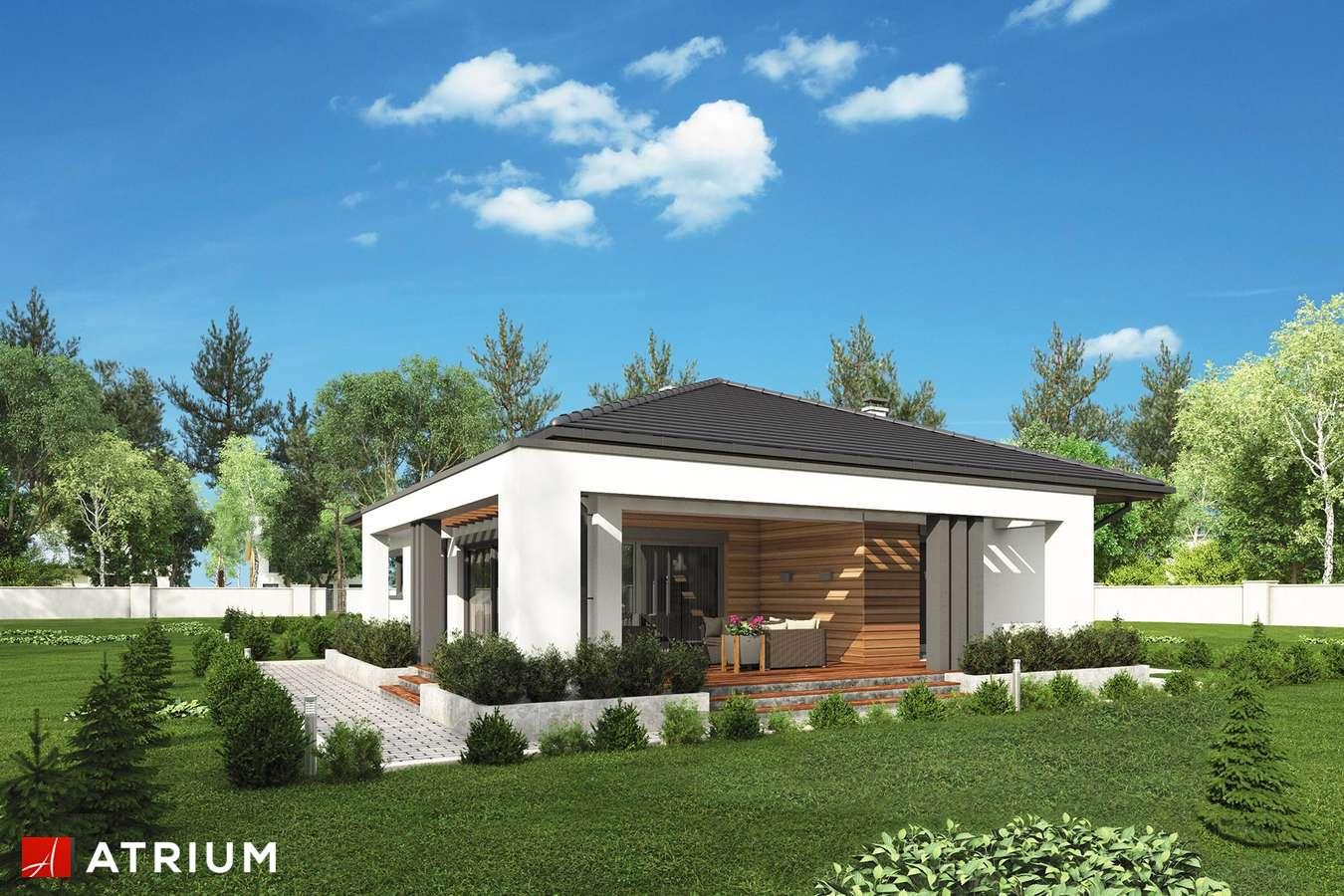 Projekty domów - Projekt domu parterowego SARDYNIA XI - wizualizacja 2 - wersja lustrzana