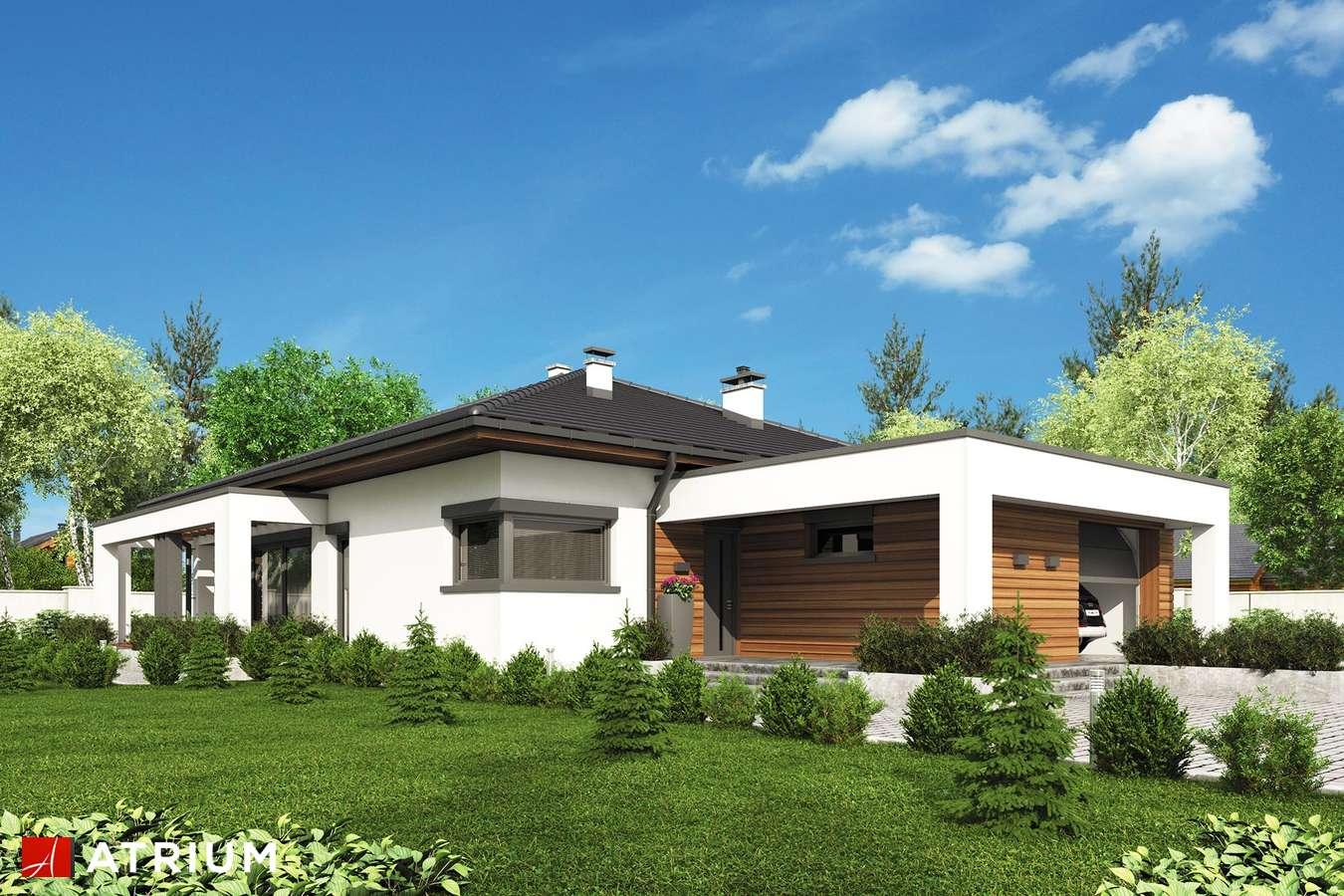 Projekty domów - Projekt domu parterowego SARDYNIA XI - wizualizacja 1