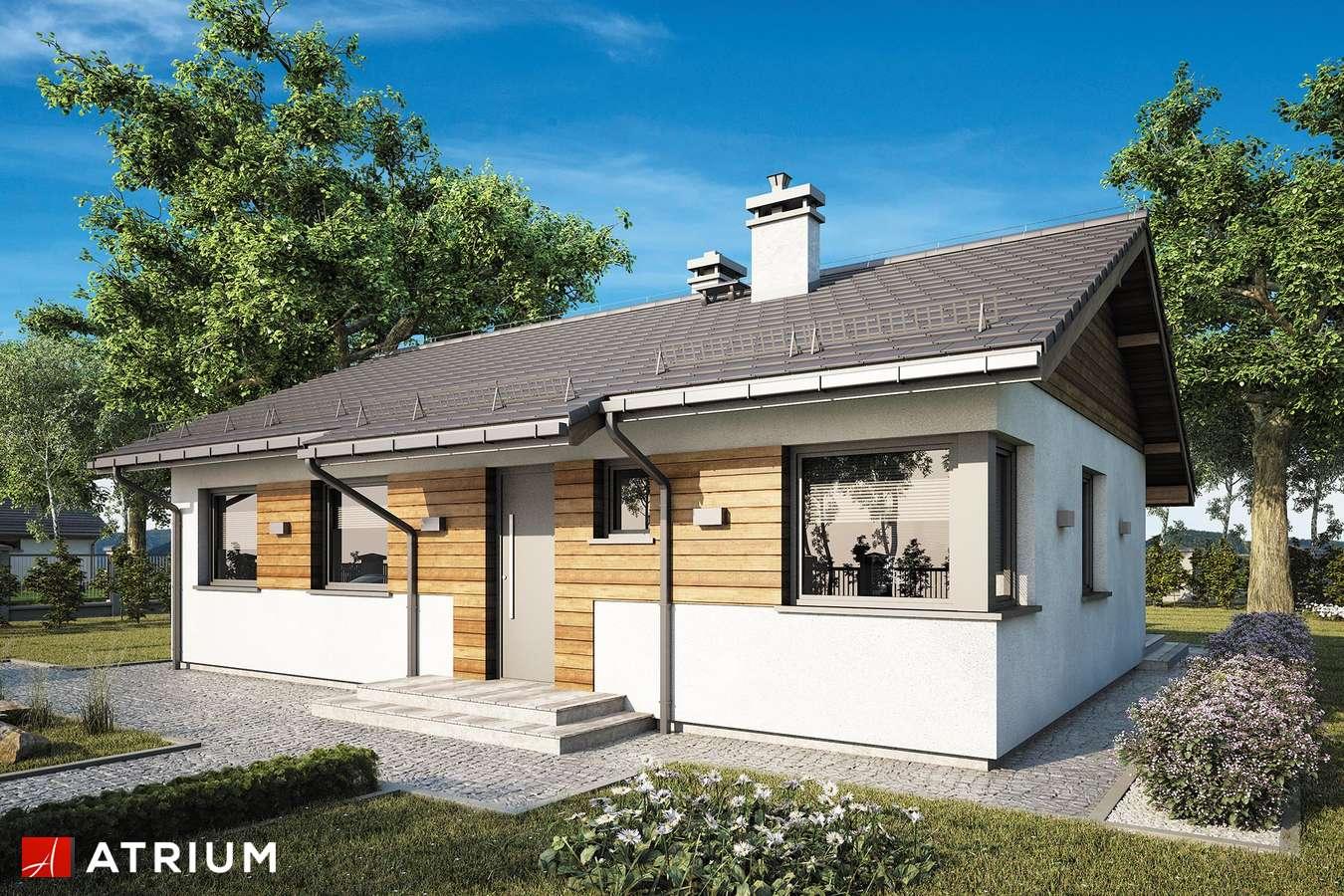 Projekty domów - Projekt domu parterowego ZORBA VIII SZ - wizualizacja 1