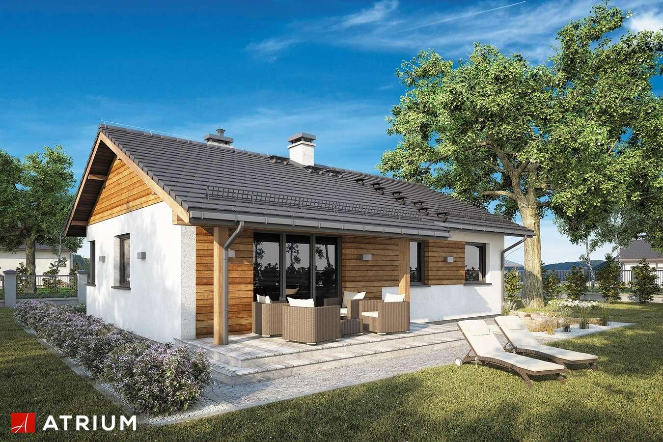 Projekty domów - Projekt domu parterowego ZORBA VIII SZ - wizualizacja 2