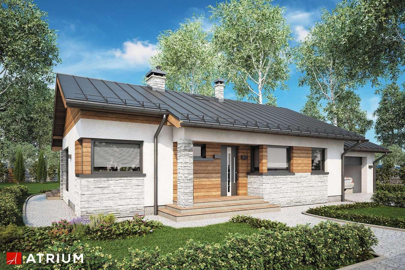 Projekty domów - Projekt domu parterowego ROBERTO II SZ - wizualizacja 2 - wersja lustrzana