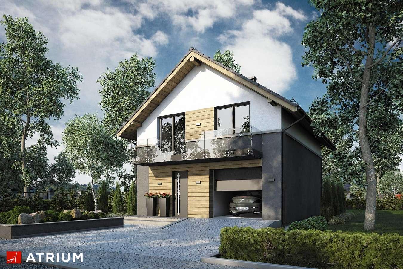 Projekty domów - Projekt domu z poddaszem SILESIA - wizualizacja 1
