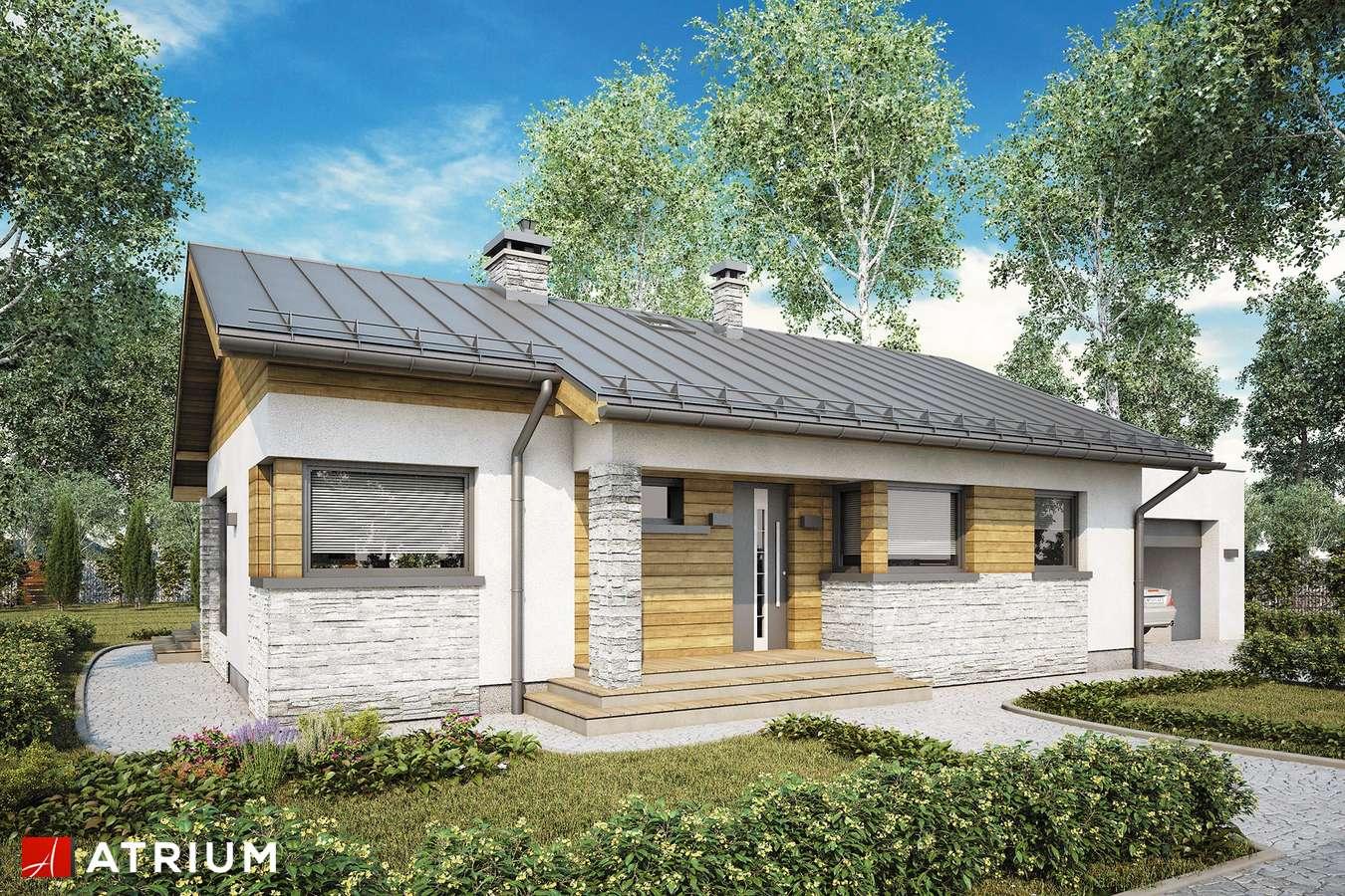 Projekty domów - Projekt domu parterowego ROBERTO III SZ - wizualizacja 1 - wersja lustrzana