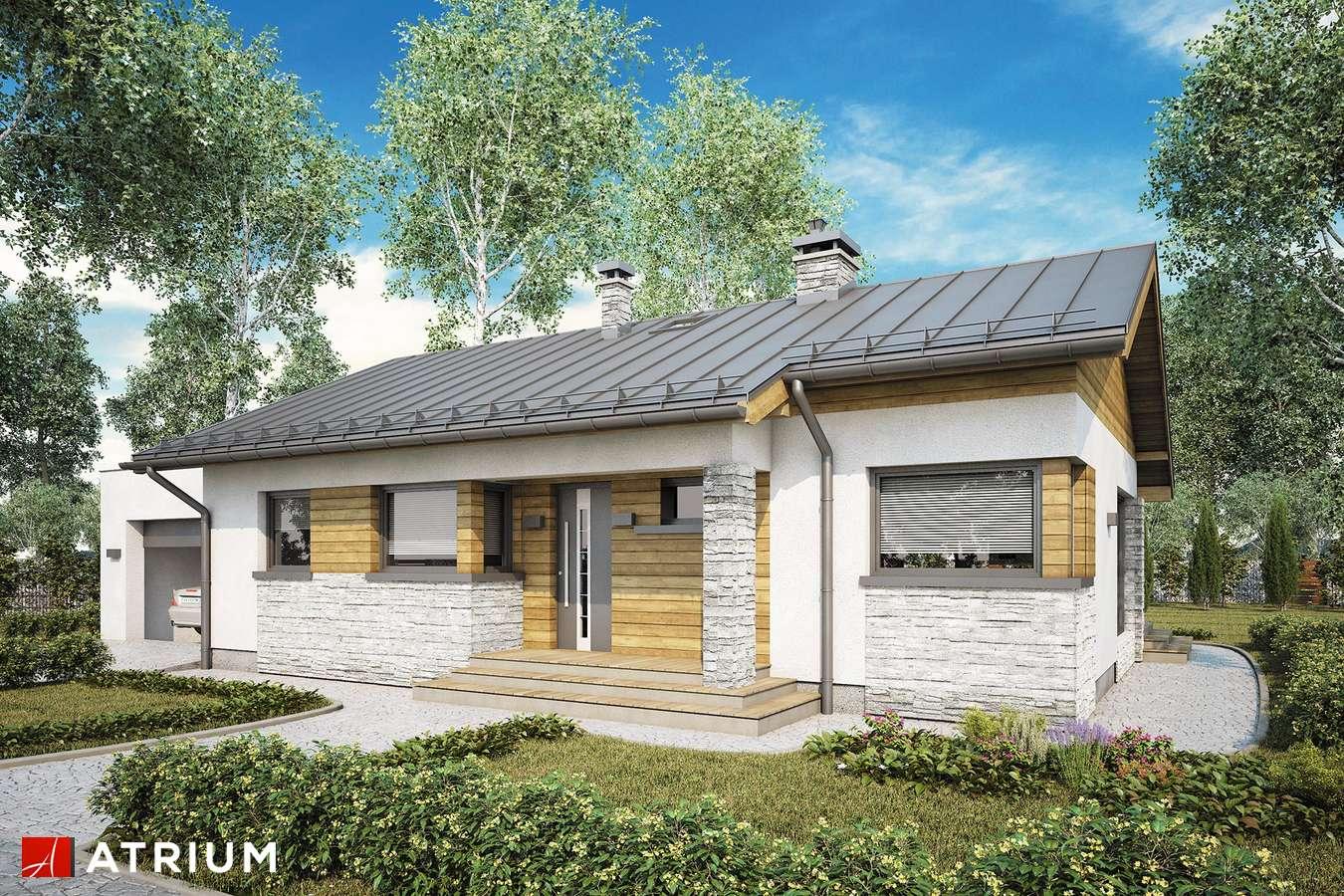 Projekty domów - Projekt domu parterowego ROBERTO III SZ - wizualizacja 1