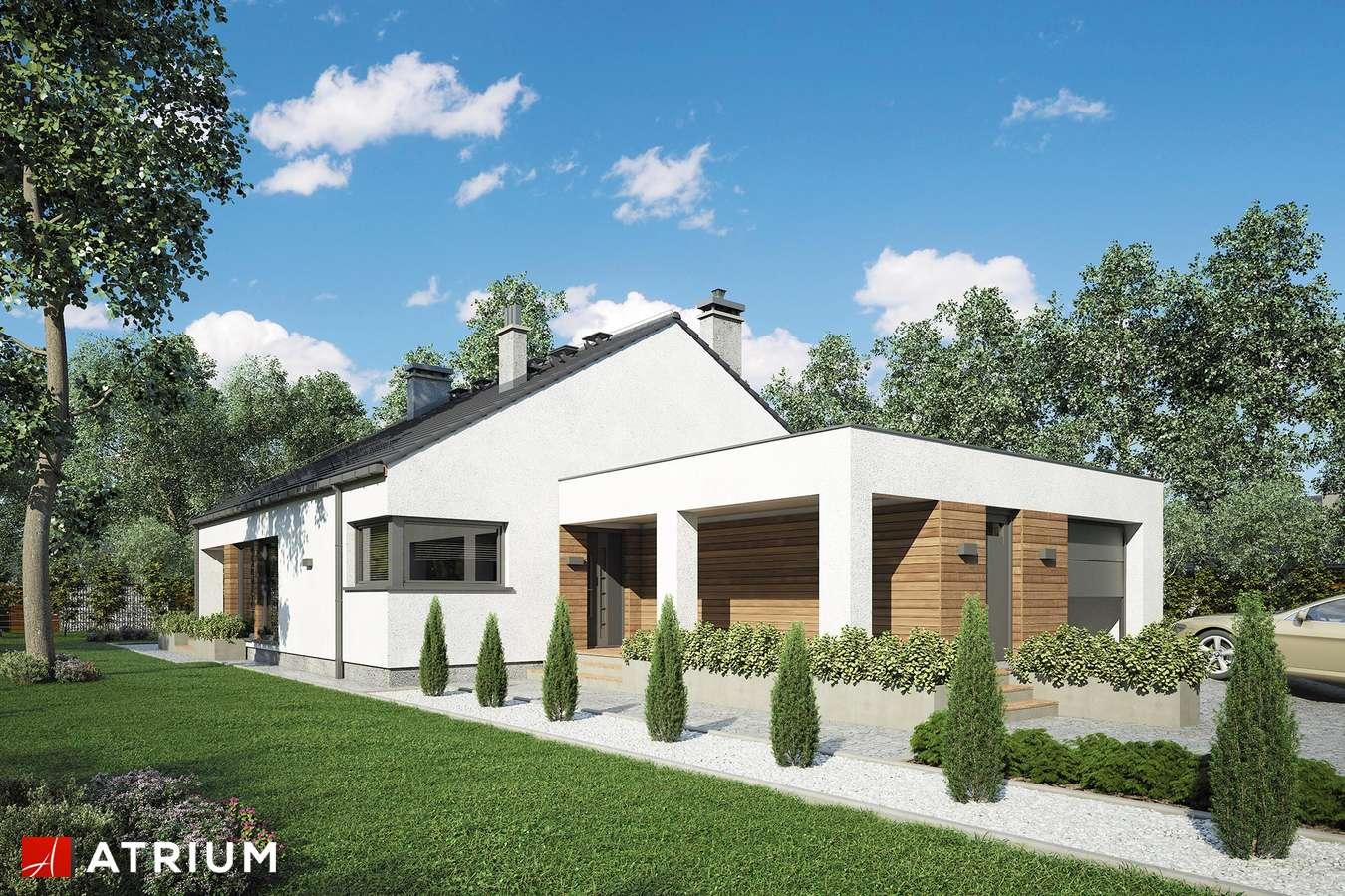 Projekty domów - Projekt domu z poddaszem PLESZKA SZ - wizualizacja 1