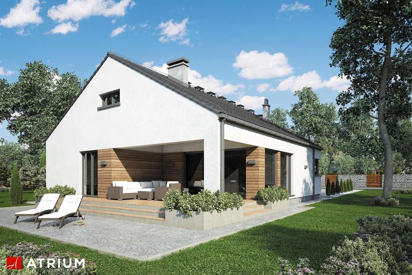 Projekty domów - Projekt domu z poddaszem PLESZKA SZ - wizualizacja 2