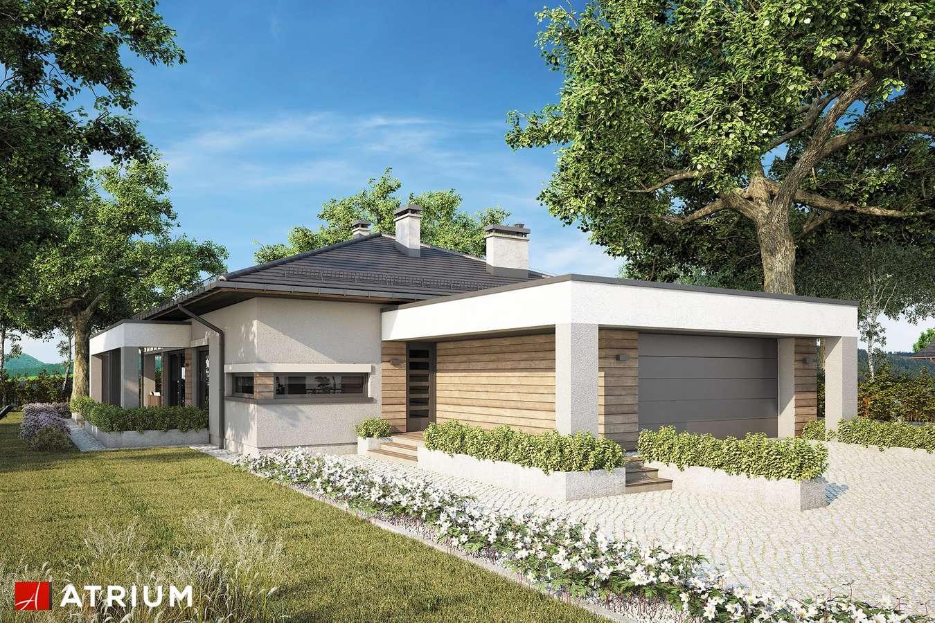 Projekty domów - Projekt domu parterowego SARDYNIA XII - wizualizacja 1