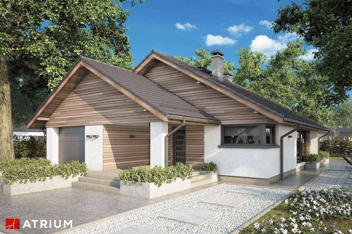 Projekty domów - Projekt domu parterowego PLISZKA IX - wizualizacja 1 - wersja lustrzana