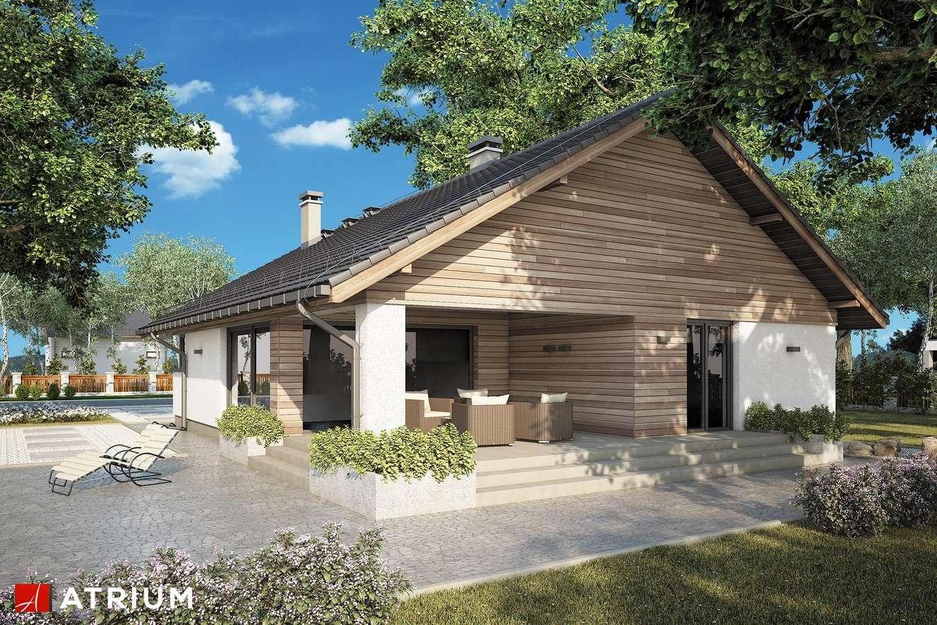 Projekty domów - Projekt domu parterowego PLISZKA IX - wizualizacja 2 - wersja lustrzana