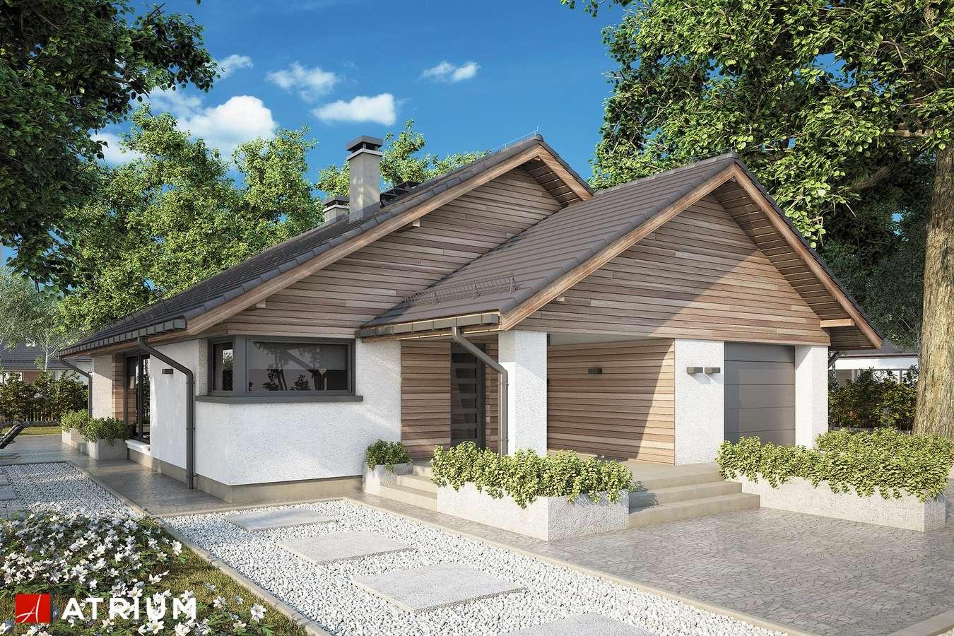 Projekty domów - Projekt domu parterowego PLISZKA IX - wizualizacja 1