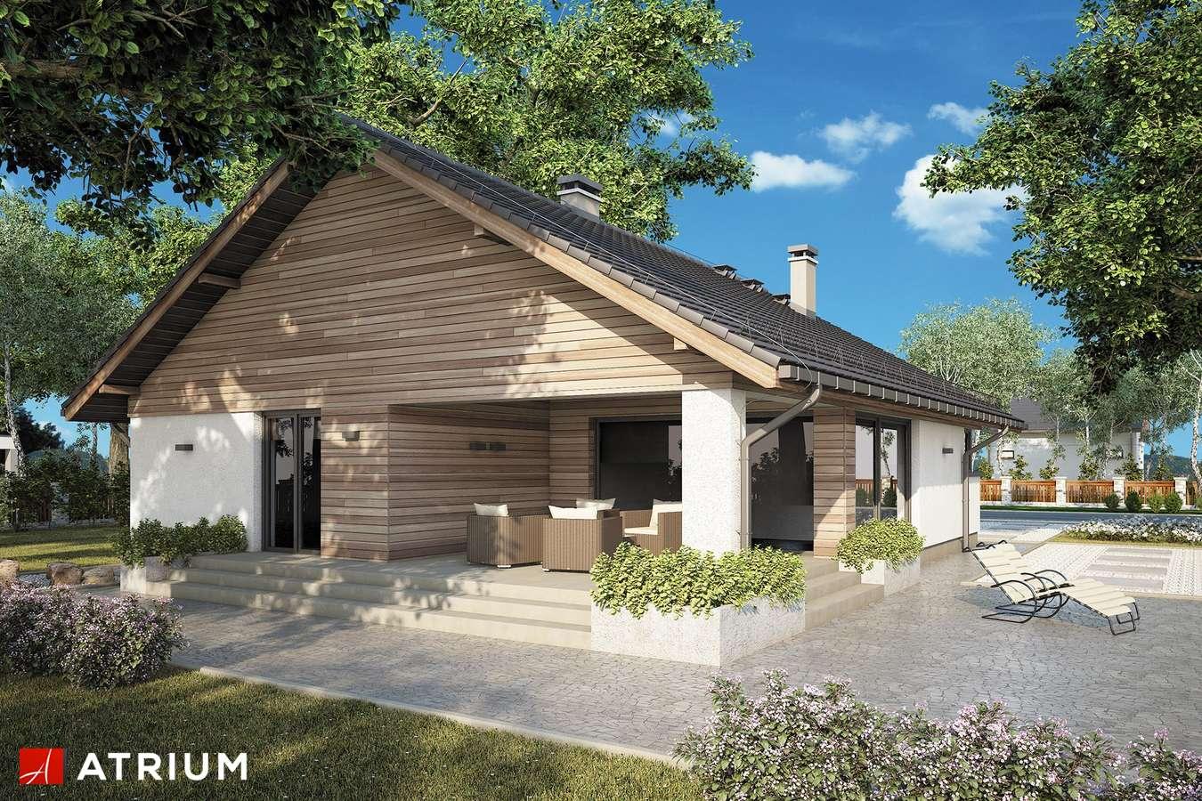 Projekty domów - Projekt domu parterowego PLISZKA IX - wizualizacja 2