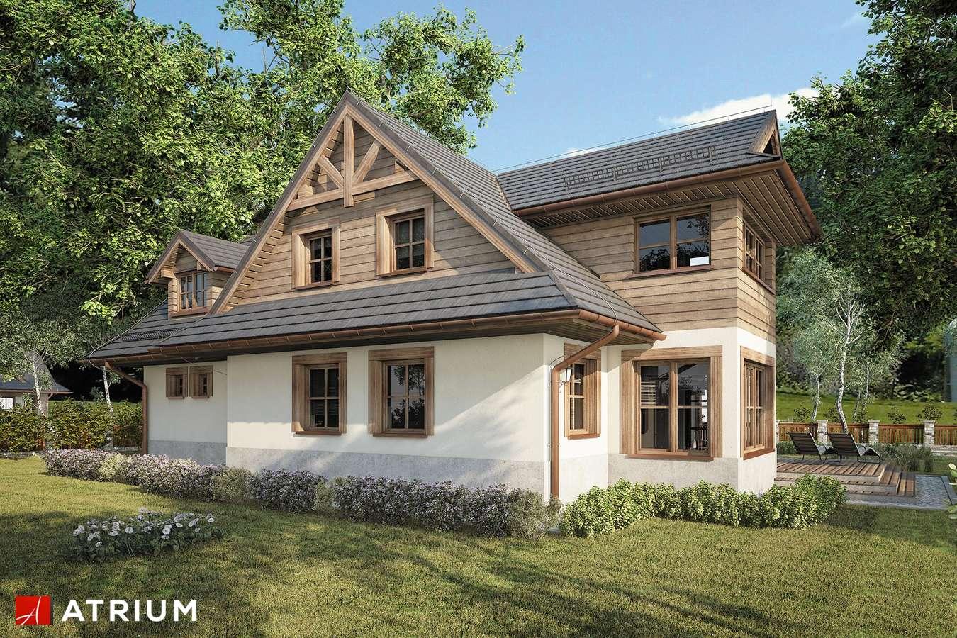 Projekty domów - Projekt domu z poddaszem SMREK V - wizualizacja 1