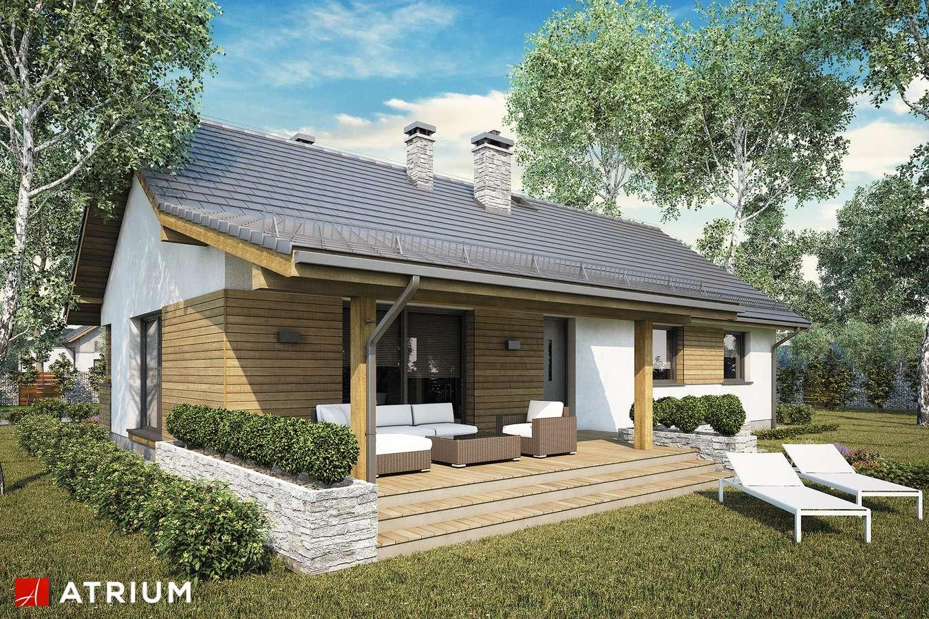 Projekty domów - Projekt domu parterowego AURORA MAXI II SZ - wizualizacja 1