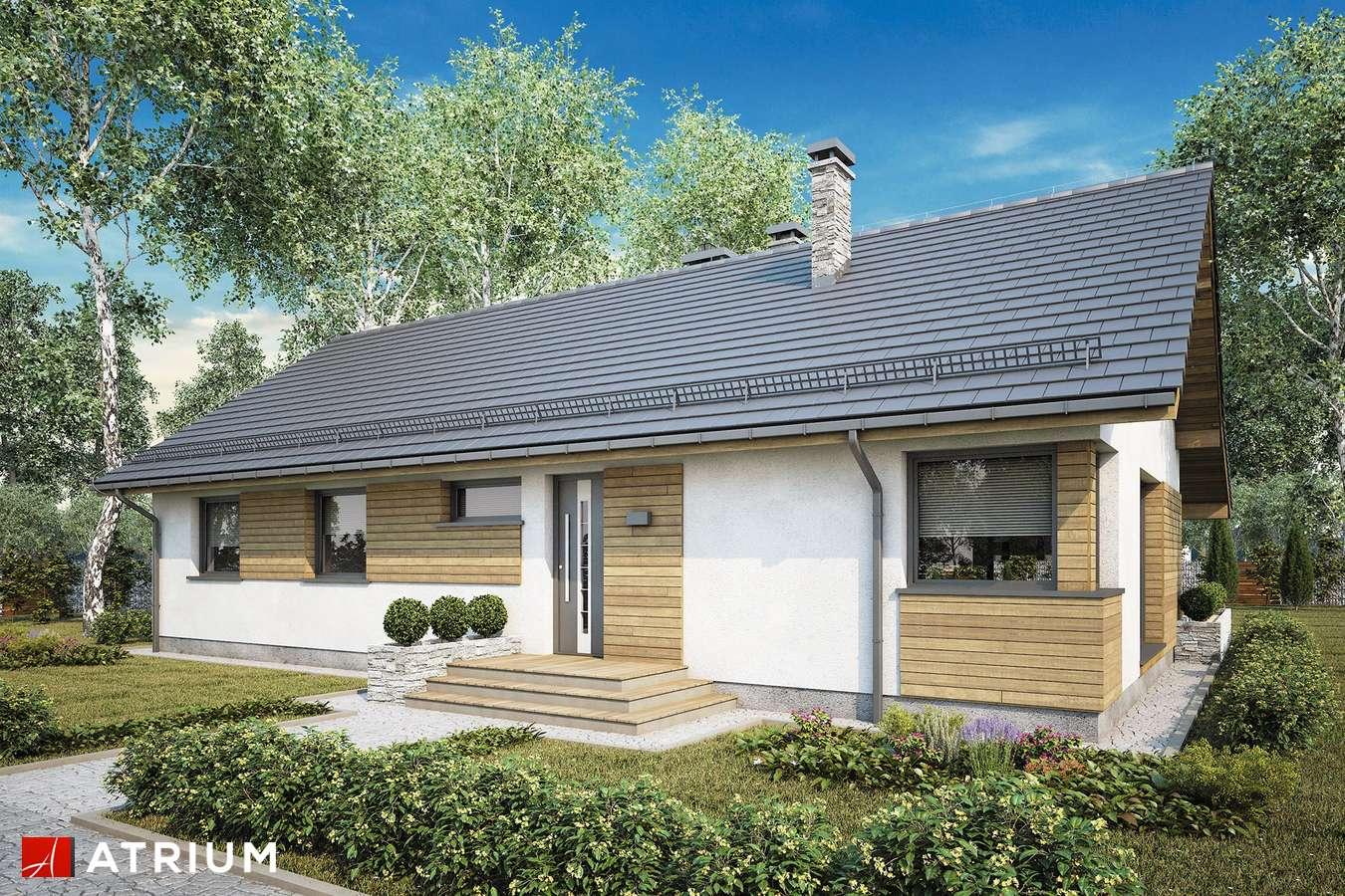 Projekty domów - Projekt domu parterowego AURORA MAXI II SZ - wizualizacja 2