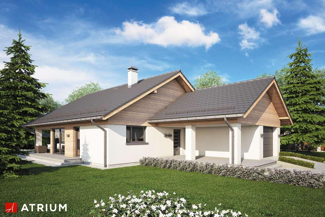 Projekty domów - Projekt domu parterowego WATSON II SZ - wizualizacja 1