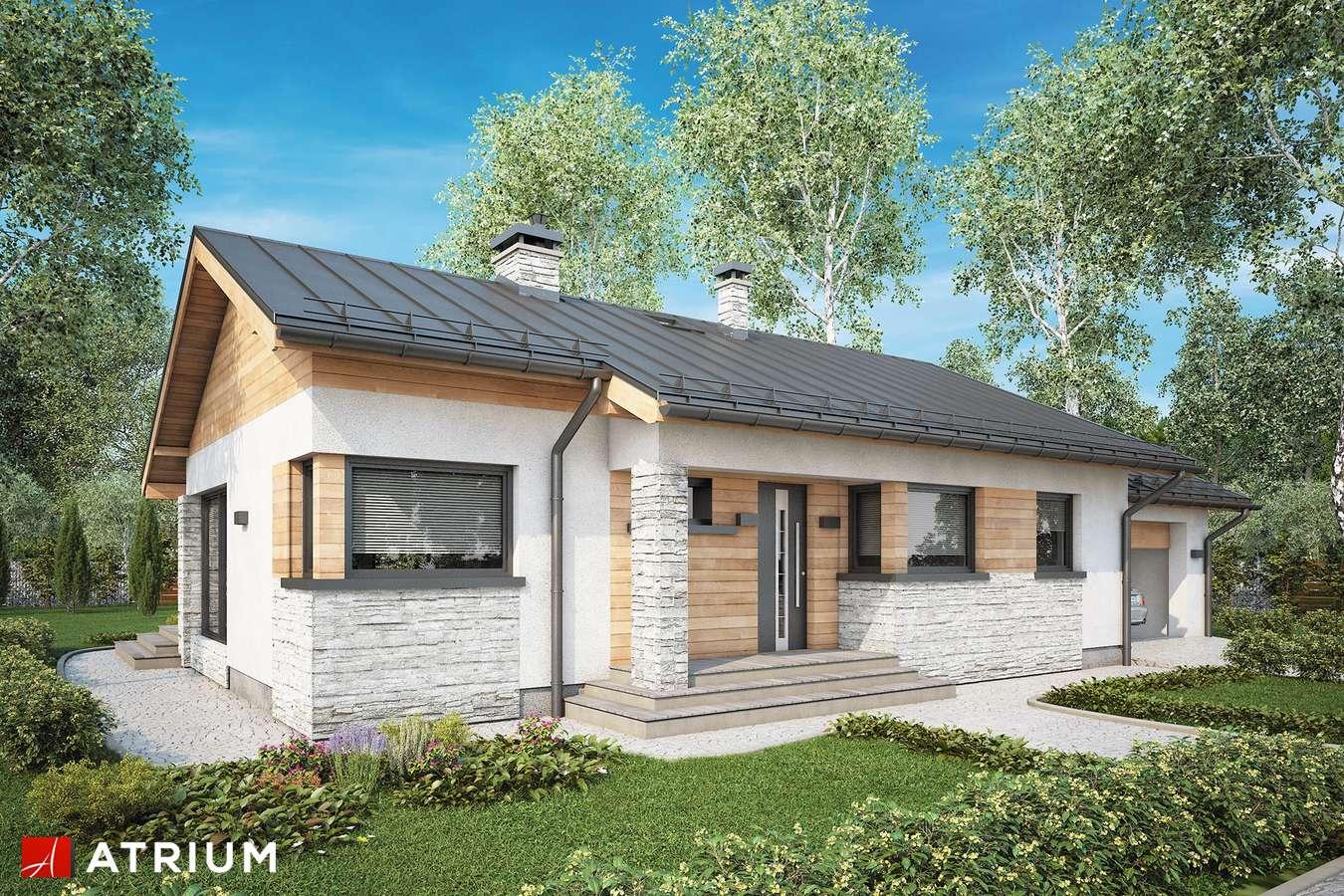 Projekty domów - Projekt domu parterowego ROBERTO II - wizualizacja 1 - wersja lustrzana