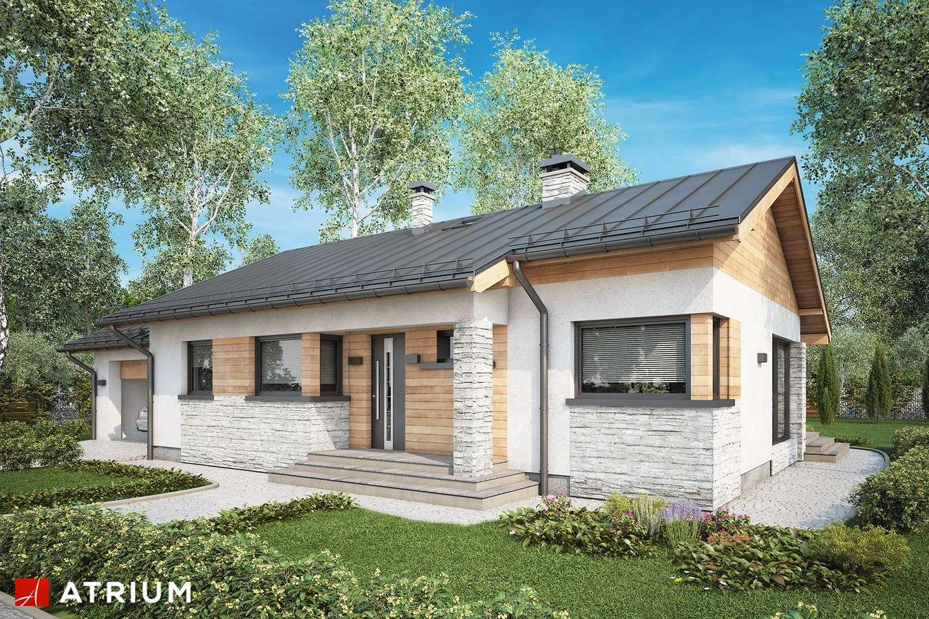 Projekty domów - Projekt domu parterowego ROBERTO II - wizualizacja 1