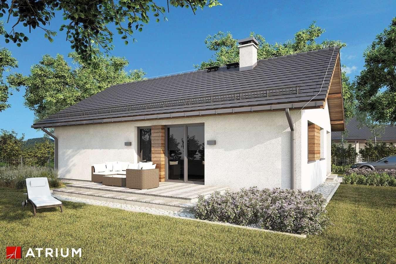 Projekty domów - Projekt domu parterowego ADAM - wizualizacja 1