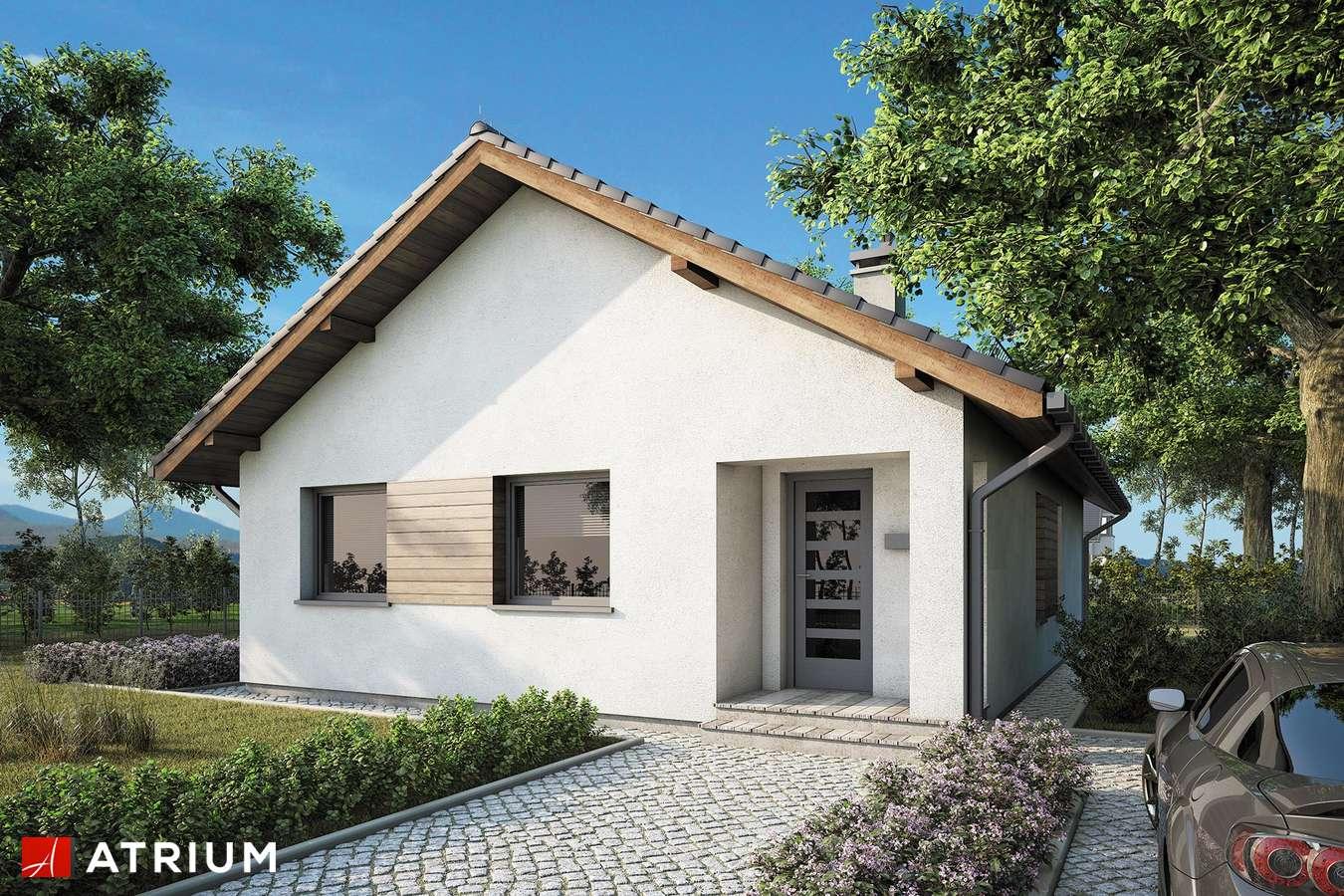 Projekty domów - Projekt domu parterowego ADAM - wizualizacja 2