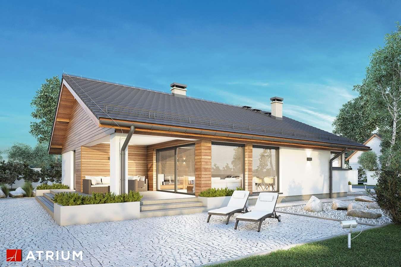 Projekty domów - Projekt domu parterowego PLISZKA IV SZ - wizualizacja 2