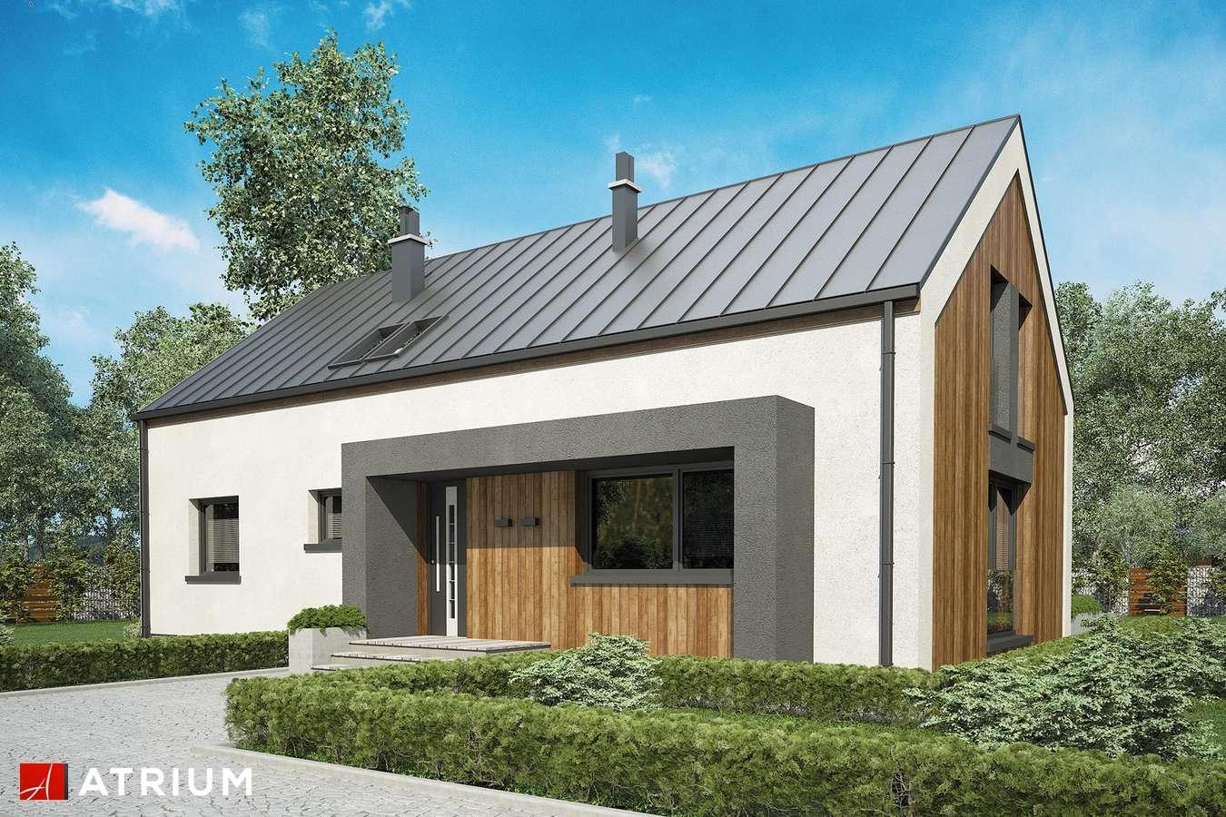 Projekty domów - Projekt domu z poddaszem DAKOTA - wizualizacja 1