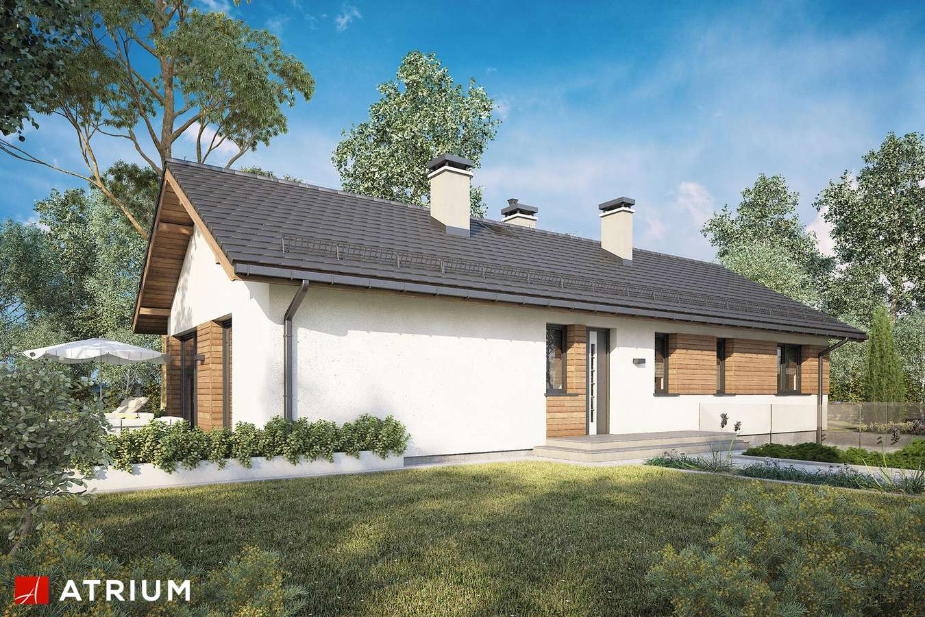 Projekty domów - Projekt domu parterowego OLIMPIA PLUS II - wizualizacja 1