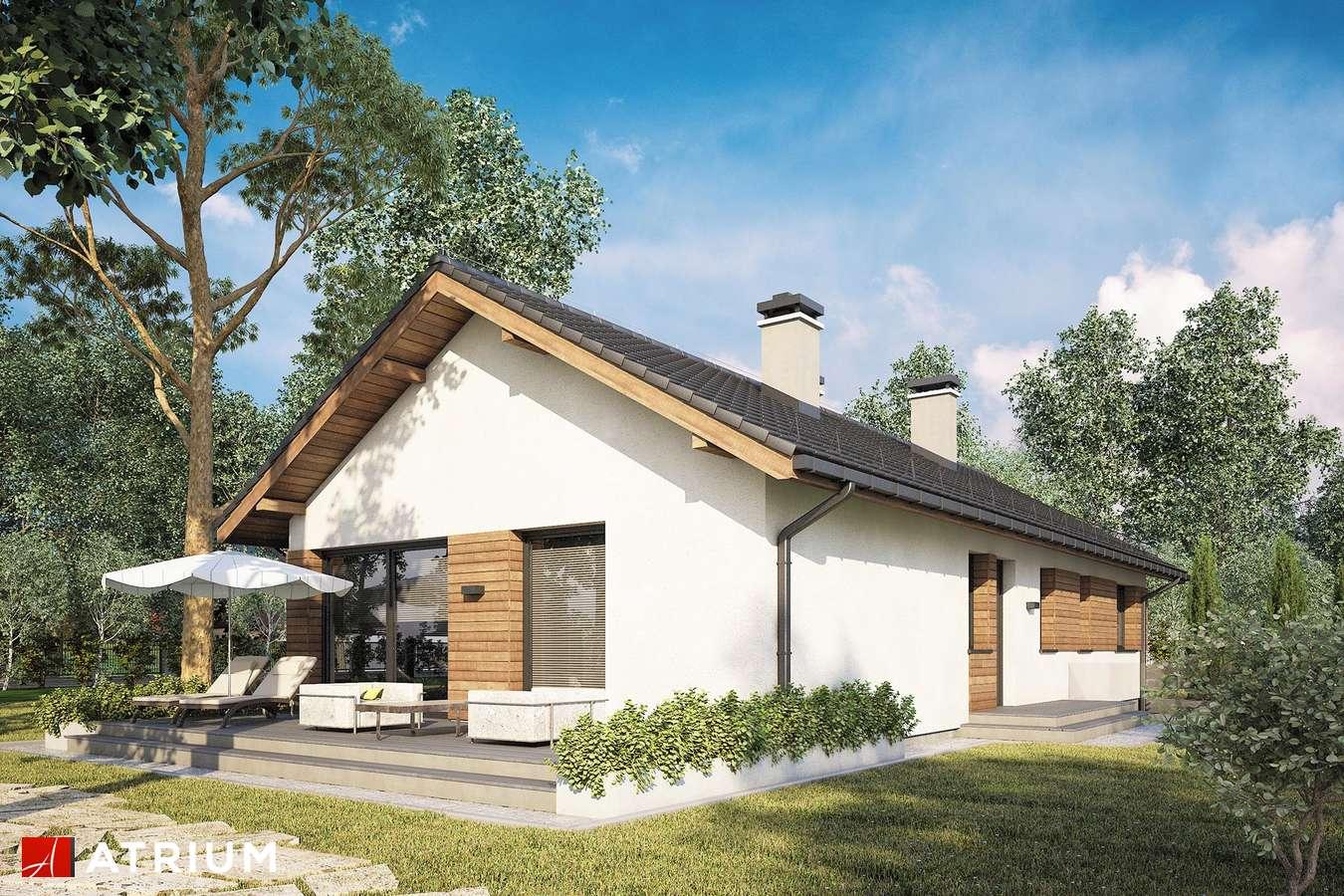 Projekty domów - Projekt domu parterowego OLIMPIA PLUS II - wizualizacja 2