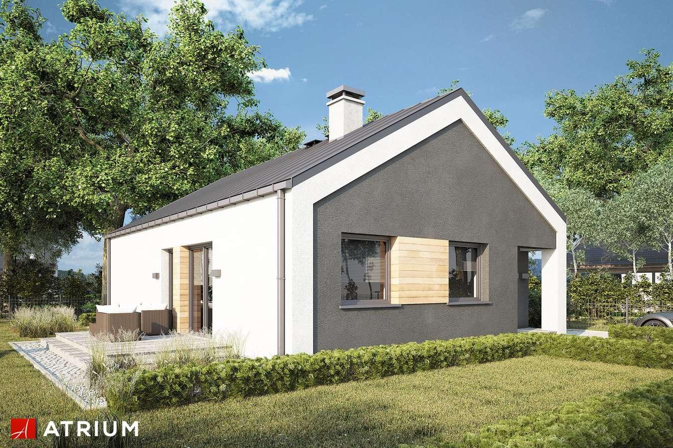 Projekty domów - Projekt domu parterowego ADAM III - wizualizacja 1