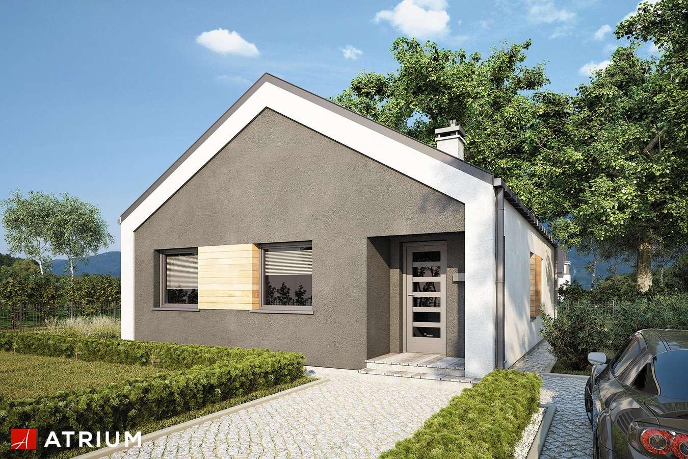 Projekty domów - Projekt domu parterowego ADAM III - wizualizacja 2