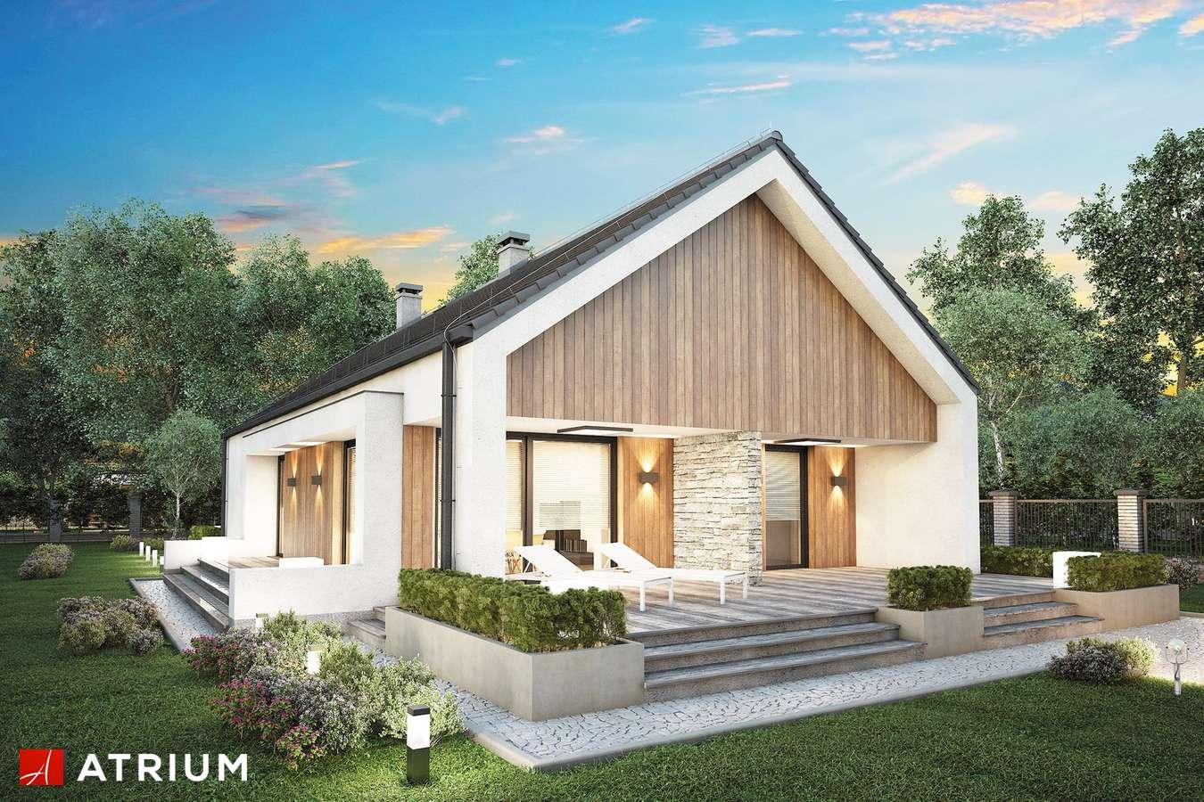 Projekty domów - Projekt domu parterowego LORENZO SZ - wizualizacja 1