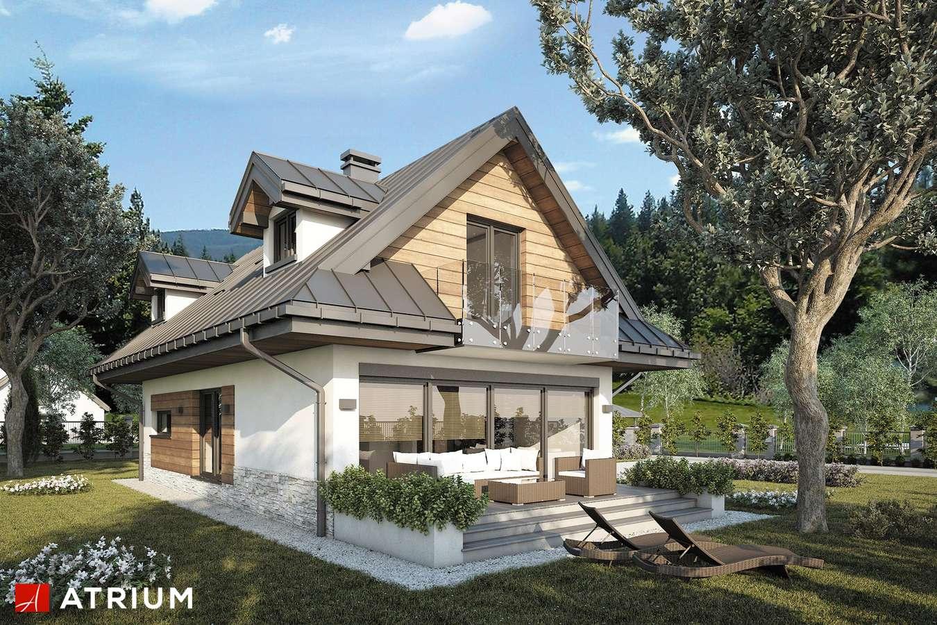 Projekty domów - Projekt domu z poddaszem KOLIBA NEW - wizualizacja 1