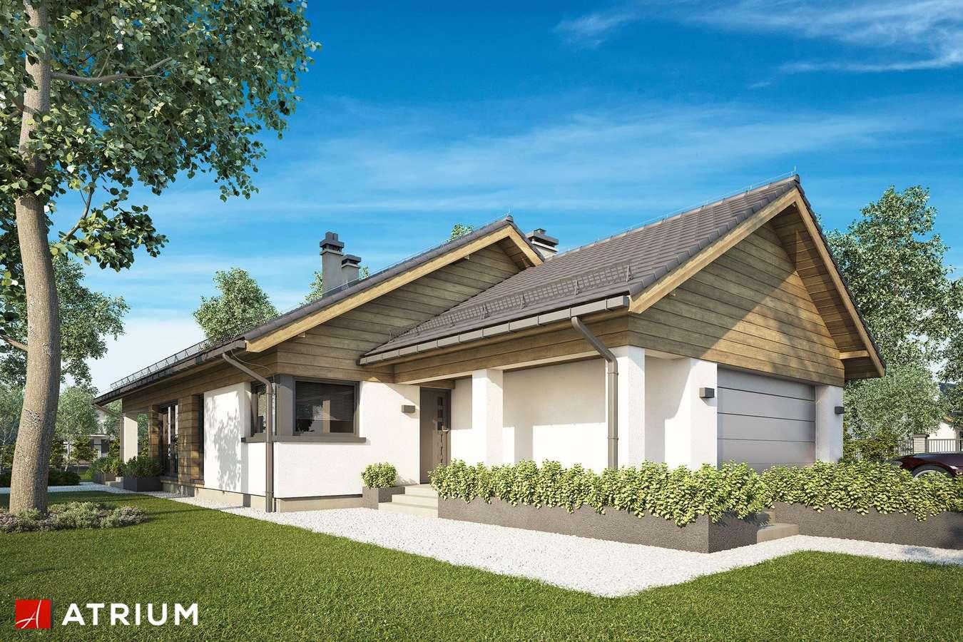 Projekty domów - Projekt domu parterowego IBIS II SZ - wizualizacja 1