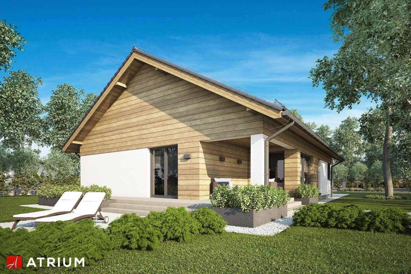 Projekty domów - Projekt domu parterowego IBIS II SZ - wizualizacja 2
