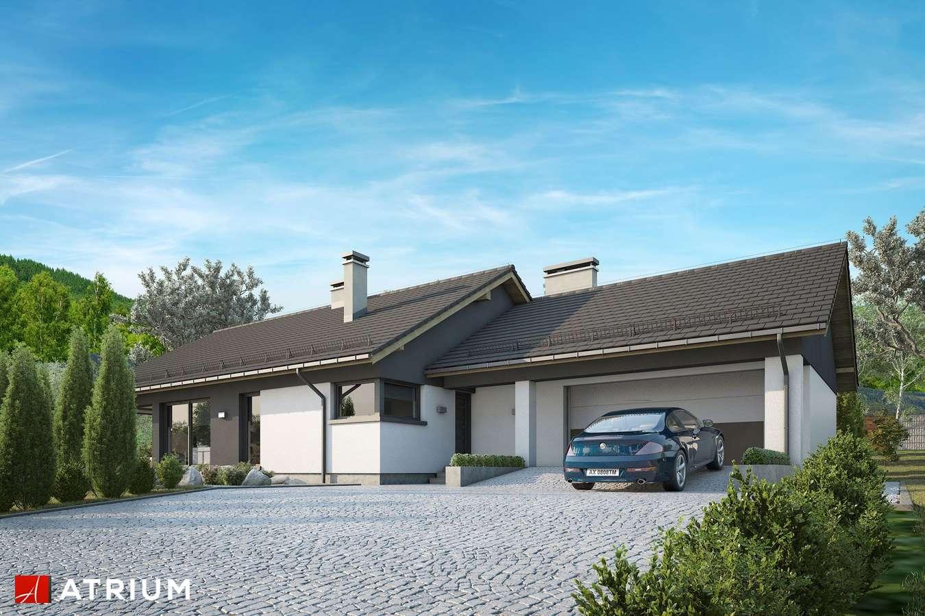 Projekty domów - Projekt domu parterowego CZAJKA III - wizualizacja 1