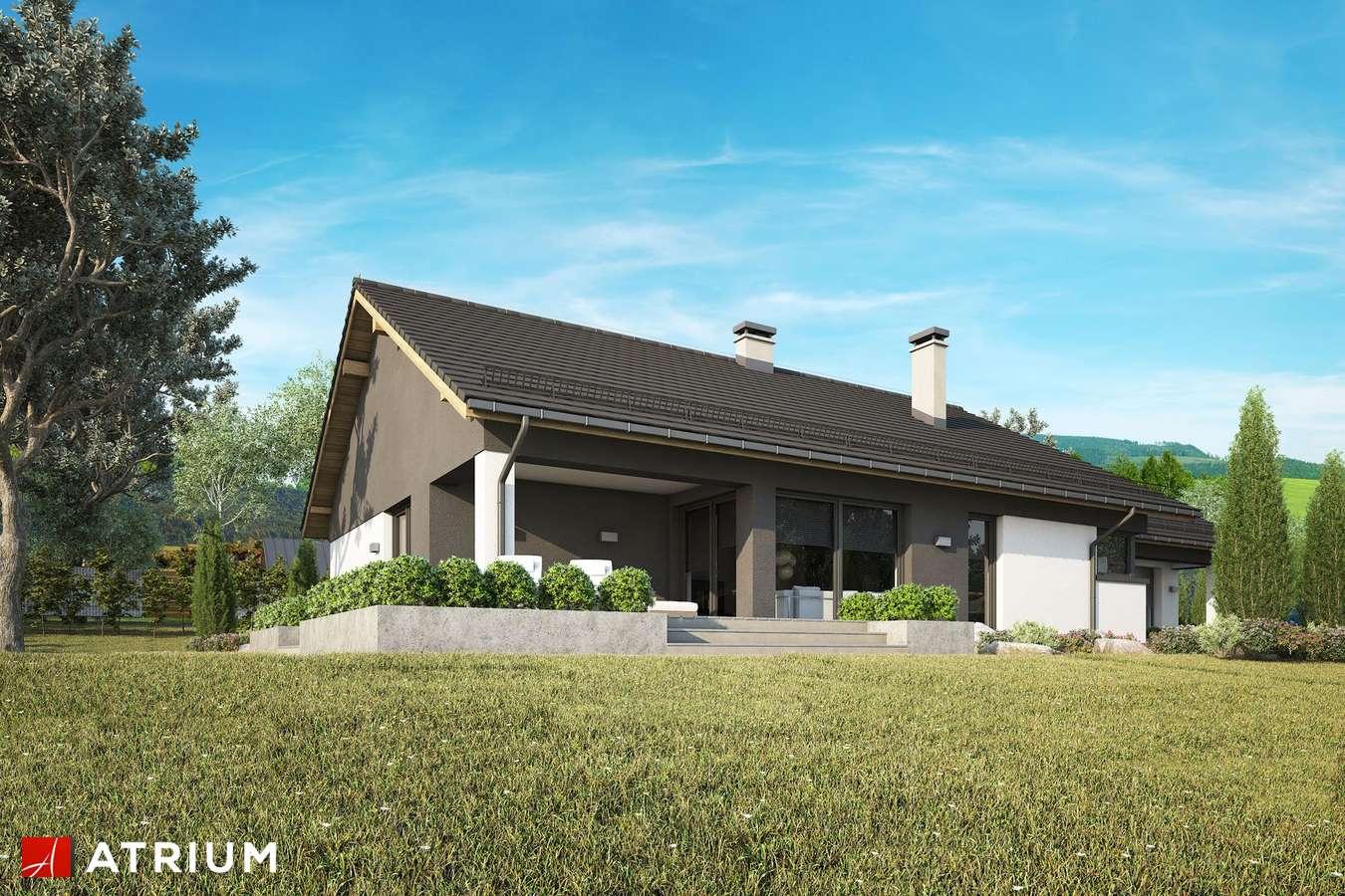 Projekty domów - Projekt domu parterowego CZAJKA III - wizualizacja 2