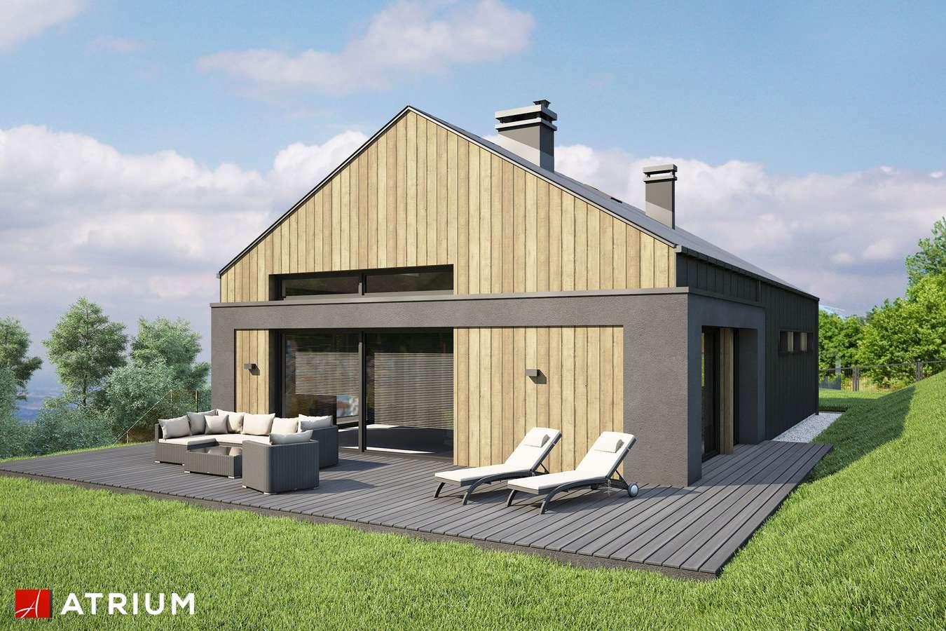 Projekty domów - Projekt domu parterowego MUNA II - wizualizacja 2