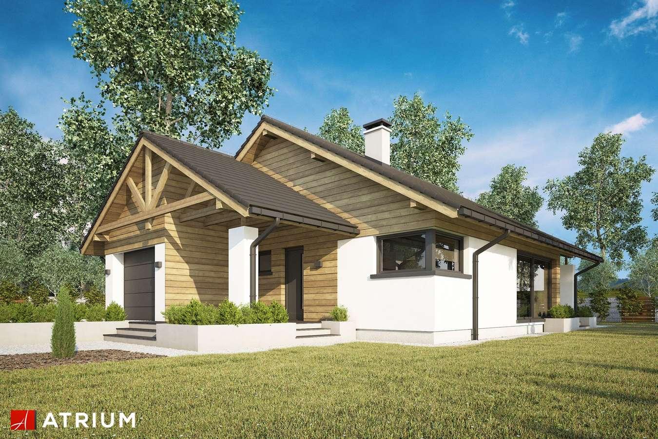 Projekty domów - Projekt domu parterowego PELIKAN XX - wizualizacja 1 - wersja lustrzana