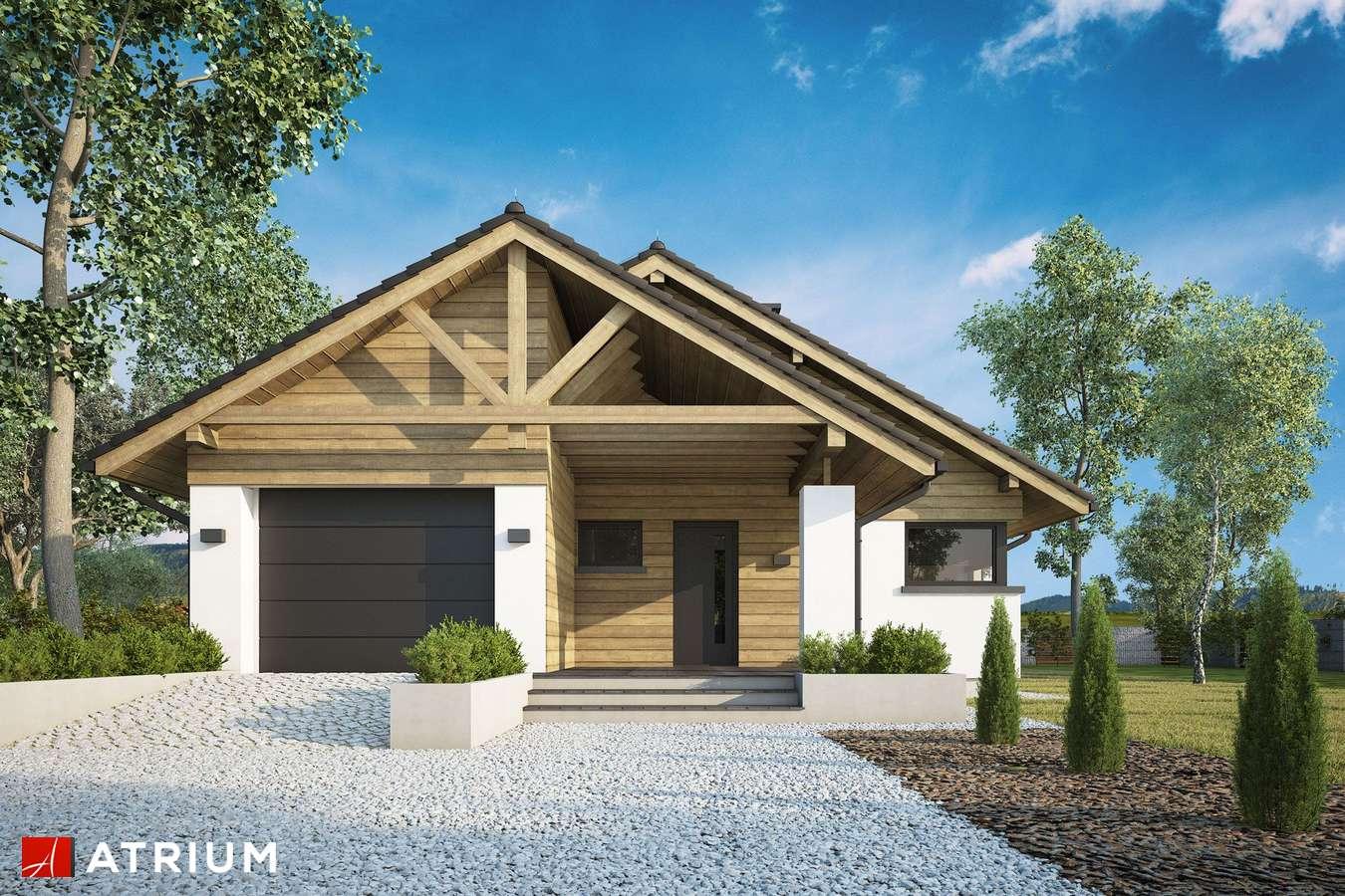 Projekty domów - Projekt domu parterowego PELIKAN XX - wizualizacja 2 - wersja lustrzana