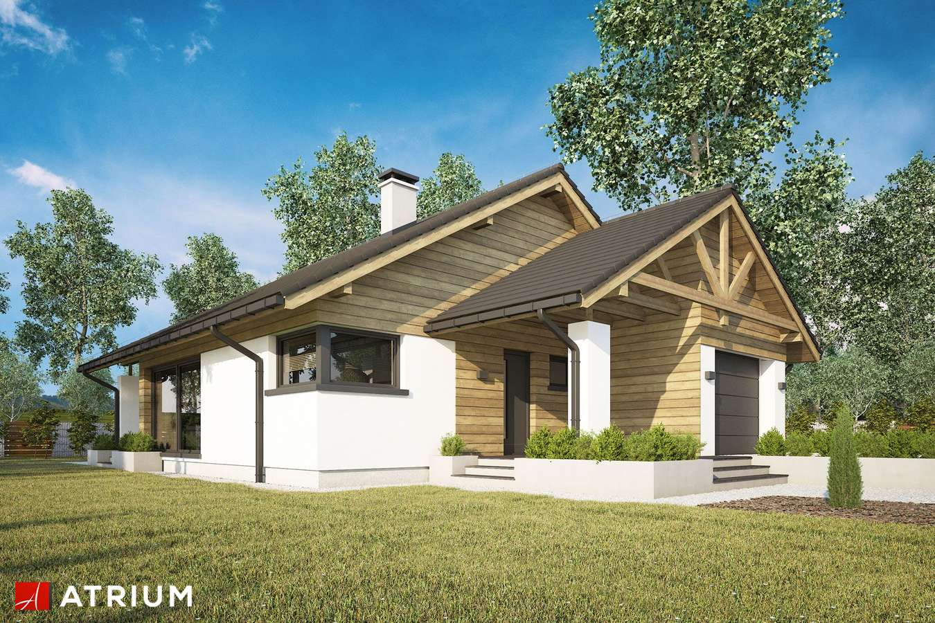 Projekty domów - Projekt domu parterowego PELIKAN XX - wizualizacja 1