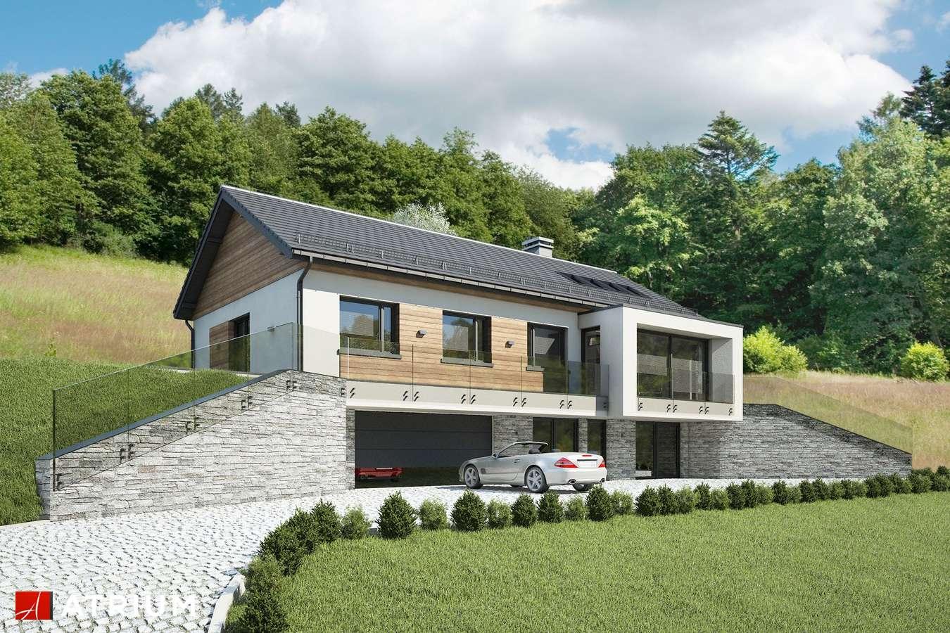 Projekty domów - Projekt domu parterowego MUNA III - wizualizacja 1