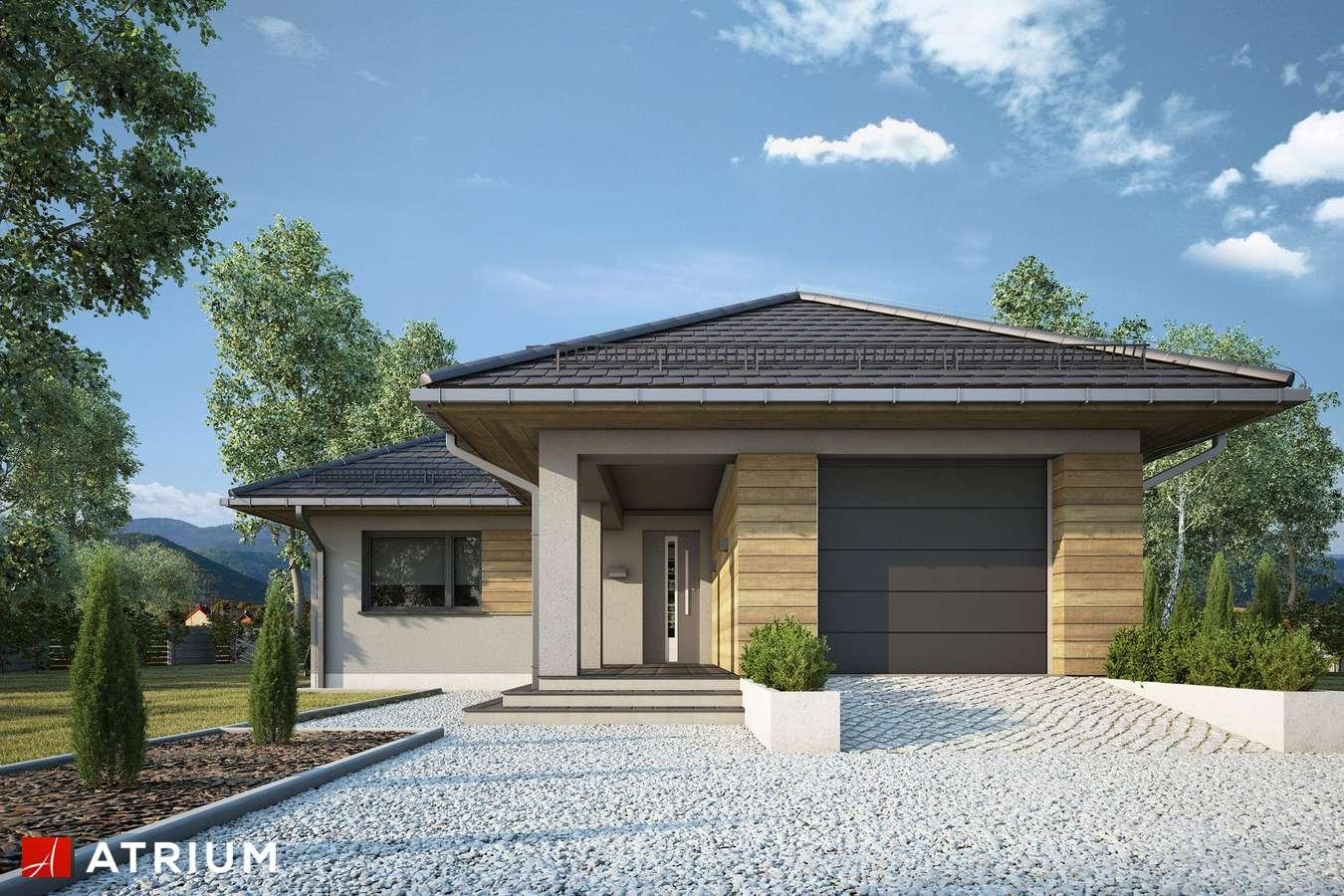 Projekty domów - Projekt domu parterowego TIP TOP IV - wizualizacja 1 - wersja lustrzana